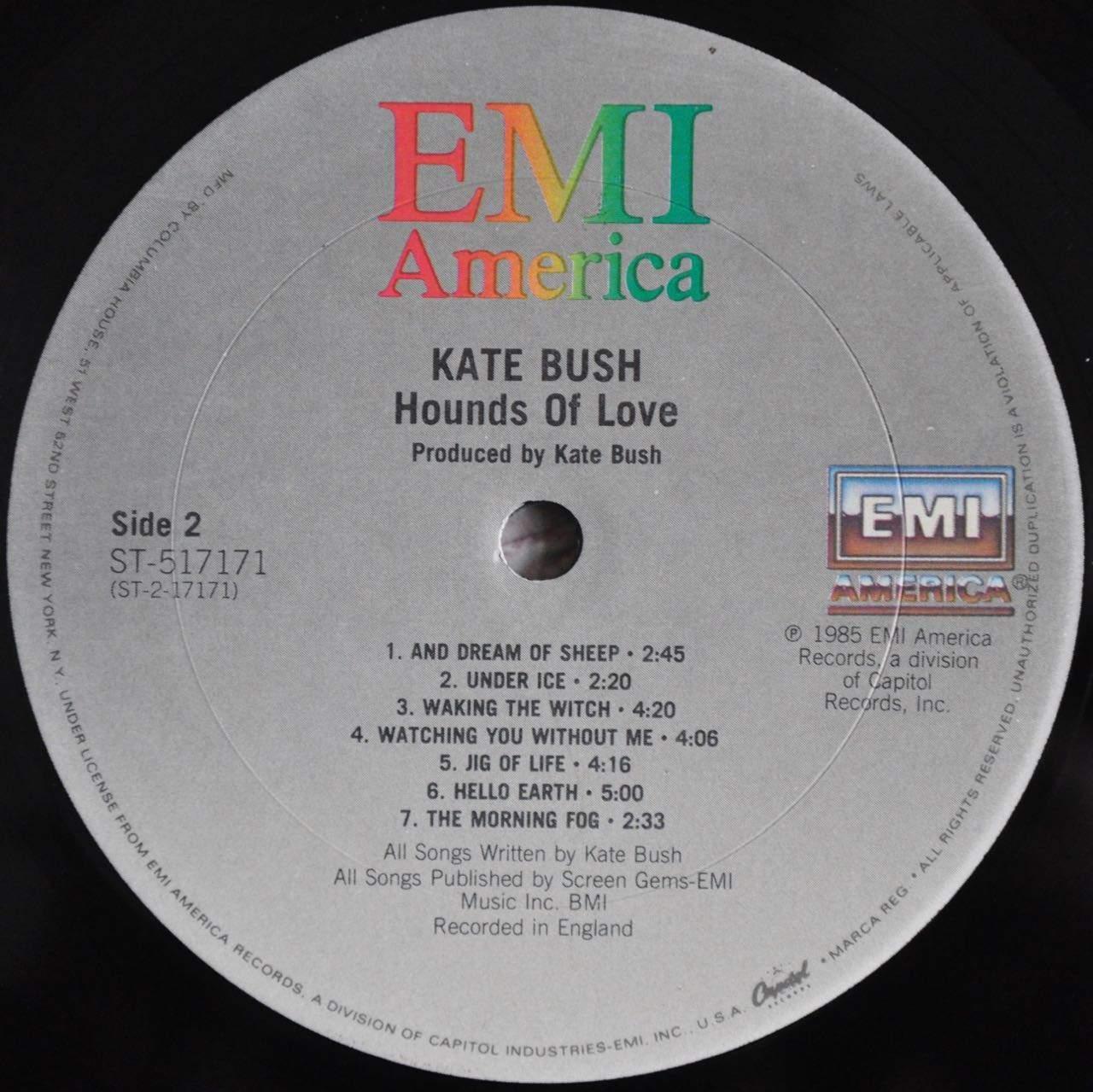 Kate bush porn